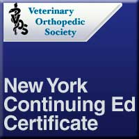 NY Continuing Ed Certificate